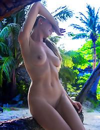 Softcore Beauty - Naturally Beautiful Amateur Nudes