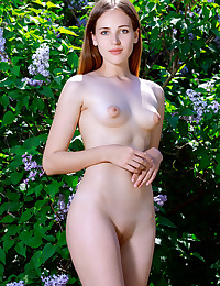Hailey nude in erotic LILACS gallery